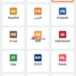 Vvdi Mini Max Dolphin Xp005 Multi Language Ok 4